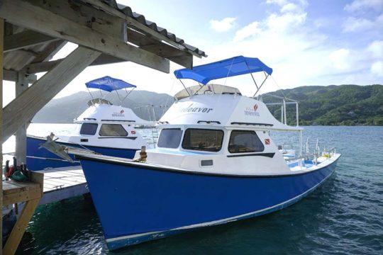 Dunbar Rock dive boats